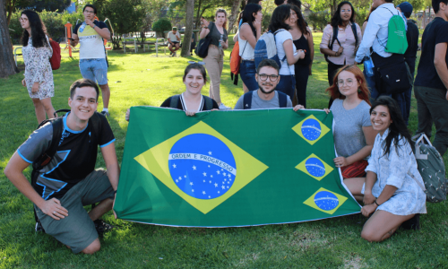 tandem brasil usach